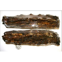 Active Pet Dried Roo Tail