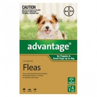 Advantage Dog Flea Treatment 6 Pack